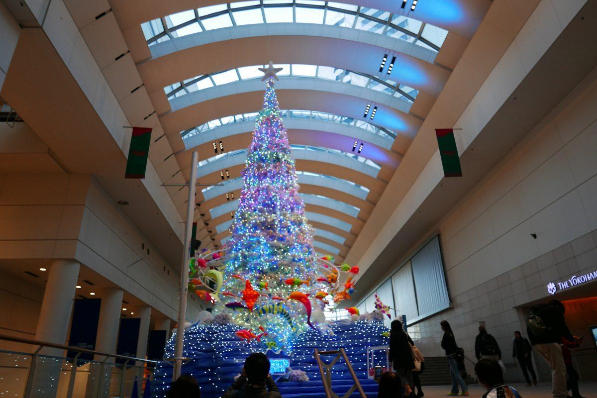 クリスマスが今年もやってきたっ!