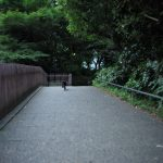 池袋ネコ歩きminiなカメラ散歩。【東池袋】