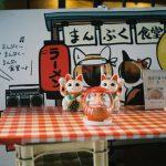 チェコ製二眼レフカメラの『flexaretⅥ』で銀座・新宿をお写ン歩です。
