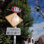 偽『東京いい道、しぶい道』〜【へび道・よみせ通り】